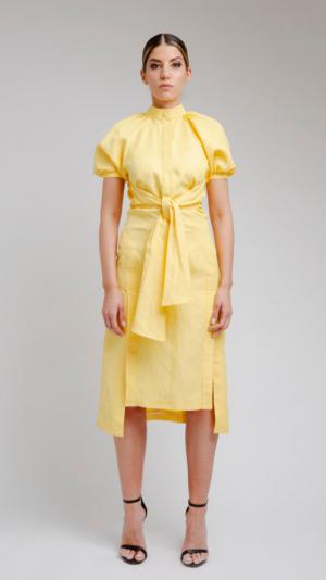 Yellow Long Dress 2