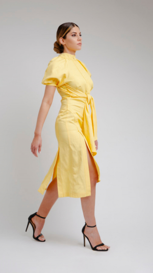 Yellow Long Dress 1
