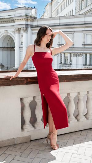 Amara Red Wine Dress 1