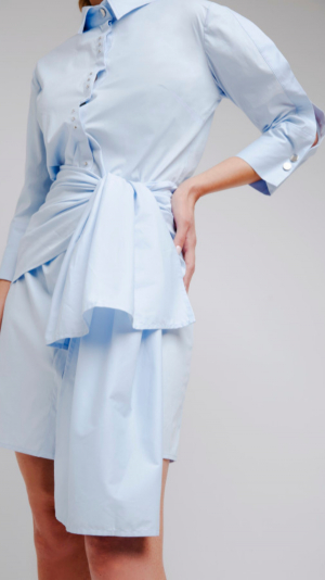 Blue Shirt Dress 1