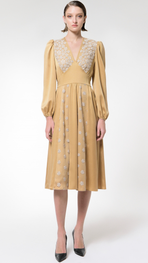 Achelois: Silk and Lace Dress 1