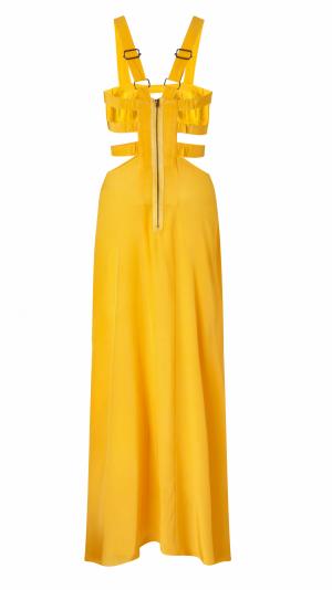 Citrine Dress 2